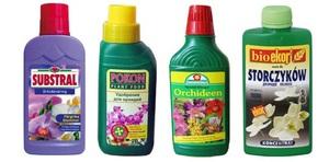 Избор на торове за домашни орхидеи.