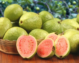 Снимката показва плодовете на гуавата