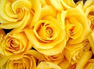 Какво означават жълтите цветя